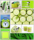Collage of photos in green color — Stock Photo