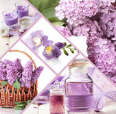 Collage of photos in purple colors — Stock Photo