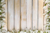 Beautiful snowdrops on wooden background — Stock Photo