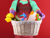 Housewife holding basket with cleaning equipment on color background. Conceptual photo of spring cleaning.  — ストック写真