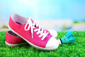 Beautiful gumshoes and shuttlecocks on green grass on bright background — Stock Photo