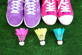 Beautiful gumshoes and shuttlecocks, ball on green grass background — Stock Photo