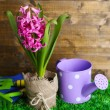 Composition with garden equipment and beautiful pink hyacinth flower in pot, on green grass, on wooden background — Stock Photo #42761629