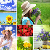 Collage of summer time — Foto de Stock