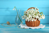 Beautiful snowdrops in basket on blue wooden table — Stock Photo