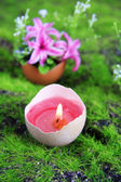 Conceptual Easter composition. Burning candle in egg and flowers on green grass background, close-up — Стоковое фото