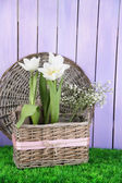 Beautiful hyacinth flower in wicker basket, on green grass on color wooden background — Stock Photo
