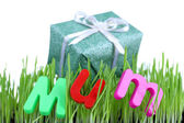 Gift box for mum on grass close up — Stock Photo