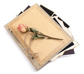 Blank old photos in album and dried flower, isolated on white — Foto Stock
