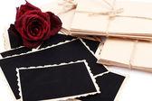 Fotos antigas em branco, letras e flores secas, isolado no branco — Foto Stock
