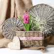 Beautiful hyacinth flower in wicker basket, on color wooden background — Stock Photo