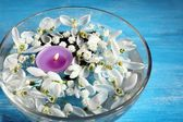 Beautiful snowdrops and candle in glass bowl with water, on blue background — Stock Photo