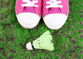 Beautiful gumshoes and shuttlecocks on green grass  background — Fotografia Stock