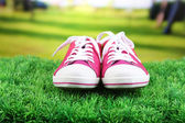 Beautiful gumshoes on green grass, on bright background — Foto de Stock