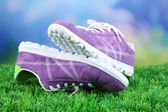 Beautiful gumshoes on green grass on bright background — Foto de Stock