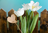 Beautiful tulips on bright background — Stock Photo