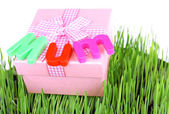 Gift box for mum on grass close up — Stockfoto