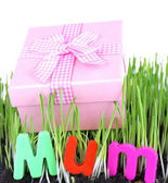 Gift box for mum on grass isolated on white — Stockfoto