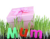 Gift box for mum on grass close up — Foto Stock