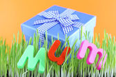 Gift box for mum on grass on color background — Stockfoto