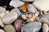Vigselringar på stenar närbild — Stockfoto