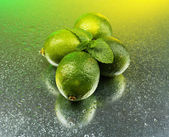 Fresh limes on bright background — Stock Photo