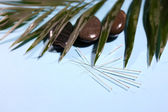Composition with needles for acupuncture, close up. — Stock Photo