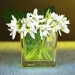 Постер, плакат: Beautiful snowdrops in vase on color background