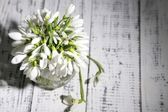 Bouquet of beautiful snowdrops on wooden background — Stock Photo