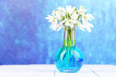 Beautiful snowdrops in vase, on wooden table on bright background — Foto de Stock
