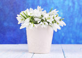 Beautiful snowdrops in vase, on wooden table on bright background — Stock Photo