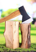 Ax and firewood on green grass, on nature background — Foto de Stock