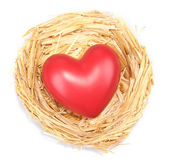 Decorative heart in nest, isolated on white — Stock Photo