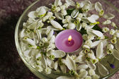 Beautiful snowdrops and candle in glass bowl with water, on purple background — Stock Photo