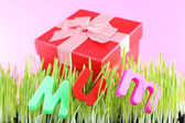 Gift box for mum on grass on color background — Stock Photo
