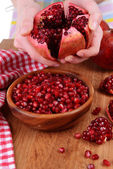 Female hands collecting seeds of  pomegranate close-up — Stock Photo