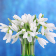 Beautiful snowdrops on bright background — Stock Photo #43364045