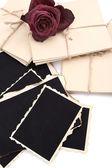 Puste stare zdjęcia, listy i suszonych kwiatów, na białym tle — Zdjęcie stockowe