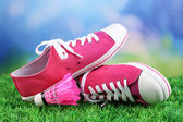 Beautiful gumshoes on green grass on bright background — Foto Stock