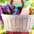 Housewife holding basket with cleaning equipment on bright background. Conceptual photo of spring cleaning. — Stock Photo #43445881