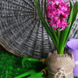Composition with garden equipment and beautiful pink hyacinth flower in pot, on green grass, on wooden background — Stock Photo #43447087
