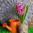 Composition with garden equipment and beautiful pink hyacinth flower in pot, on green grass, on wooden background — Stock Photo #43447113