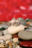Wedding rings on rocks on red background — Stock Photo