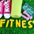 Fitness and healthy life. Conceptual photo. Gumshoes, towel, dumbbells and water bottle on green grass background — Stock Photo #43455753
