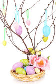 Easter composition with eggs on branches isolated on white — Stock Photo