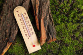Thermometer on green grass background — Stock Photo