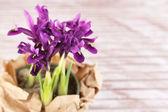 Beautiful irises on wooden table — Stock Photo