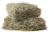 Hay, isolated on white — Stock Photo