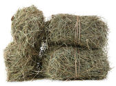 Hay, isolated on white — Stock Photo
