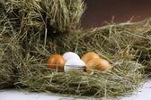 Eieren op hooi, close-up — Stockfoto